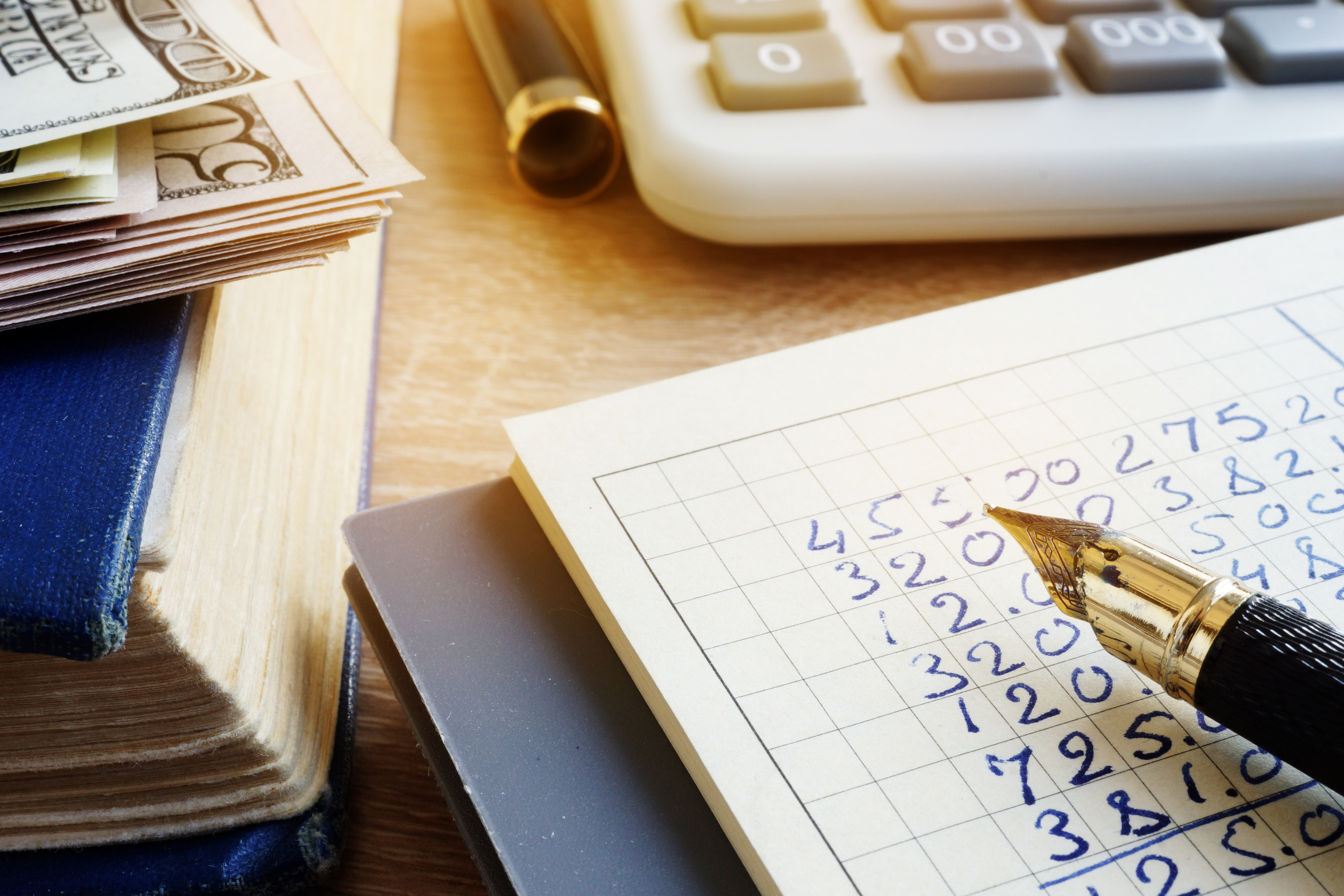 4 Options to COnsider if you Cant Pay Taxes